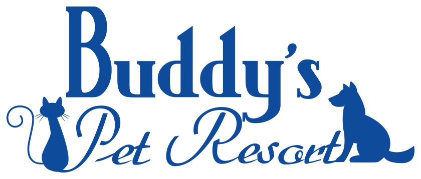 Buddys Pet Resort and Mobile Grooming